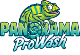 Panorama ProWash